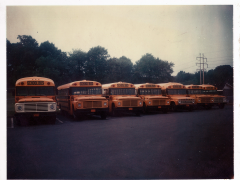 Picture of old buses